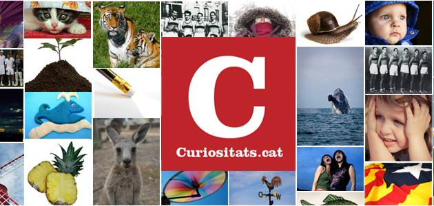 Curiositats.cat